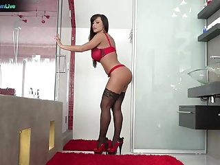 Lisa Ann has no problem getting her asshole pounded